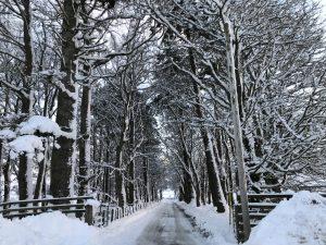 Snowy Gaskbeg Drive
